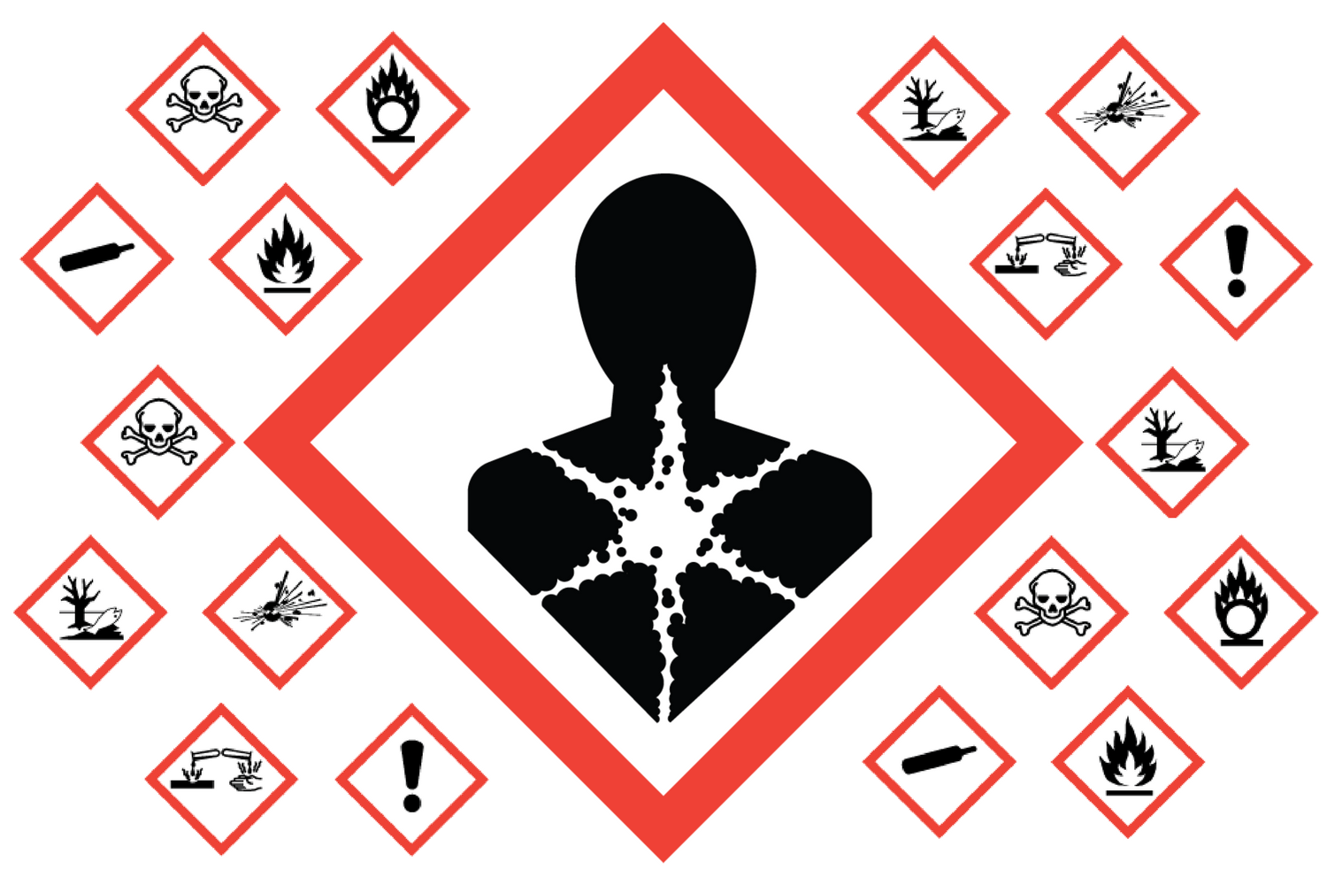 Red outlined diamonds showing different types of hazards, such as fire, poison, and corrosion.