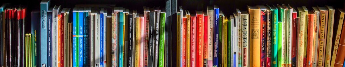 Bookshelf showing spines of brightly colored books.