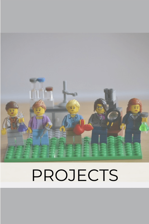 SciMoms projects